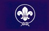 world_scout